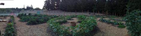 Keyhole Garden Beds, Blackbird Farm: Mendocino, CA
