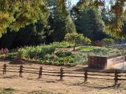 Blackbird Farm Overlook: Mendocino, CA