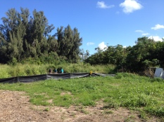 Clearing Orchard Area: Camp Mokuleia 10 Acre Design