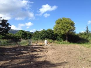 Camp Mokuleia 2013 Future Veggie Bed Area