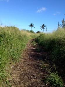 Road View 2014: Camp Mokuleia, Oahu